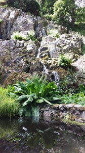 Beautiful Waterfall at Mount Congreve